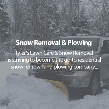 https://tylerslawncare.ca/wp-content/uploads/2018/04/TLC-Snow-Removal-380x380.jpg