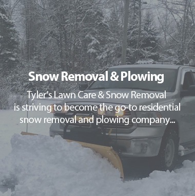 Tlc Snow Removal Snow Removal Plowing Amp Lawn Care