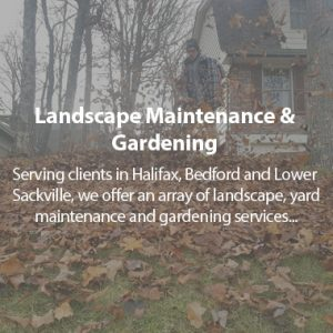 Tlc Landscaping And Maintenance Snow Removal Plowing Services In Halifax Bedford Lower Sackville