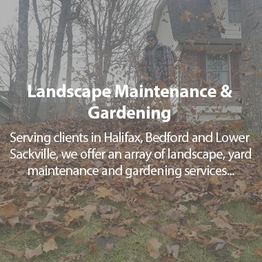https://tylerslawncare.ca/wp-content/uploads/2018/04/TLC-landscaping-and-maintenance-380x380.jpg