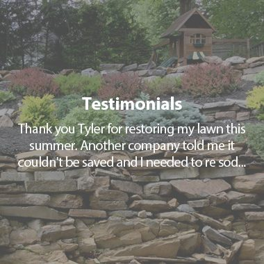 https://tylerslawncare.ca/wp-content/uploads/2018/04/testimoinalsb-380x380.jpg